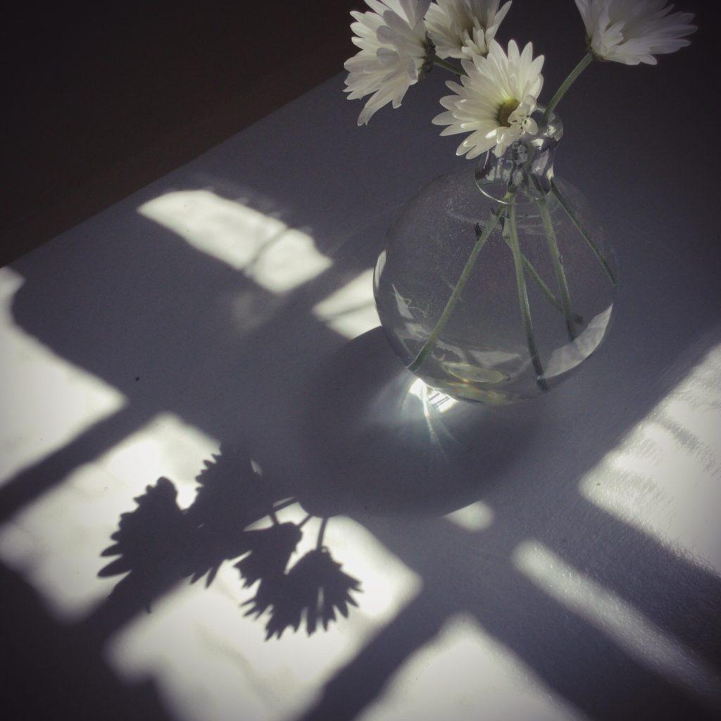 Le vase ©photo .CleoSimplement.com